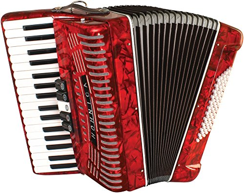 11 Best Accordions (Must Read Reviews) For September 2019